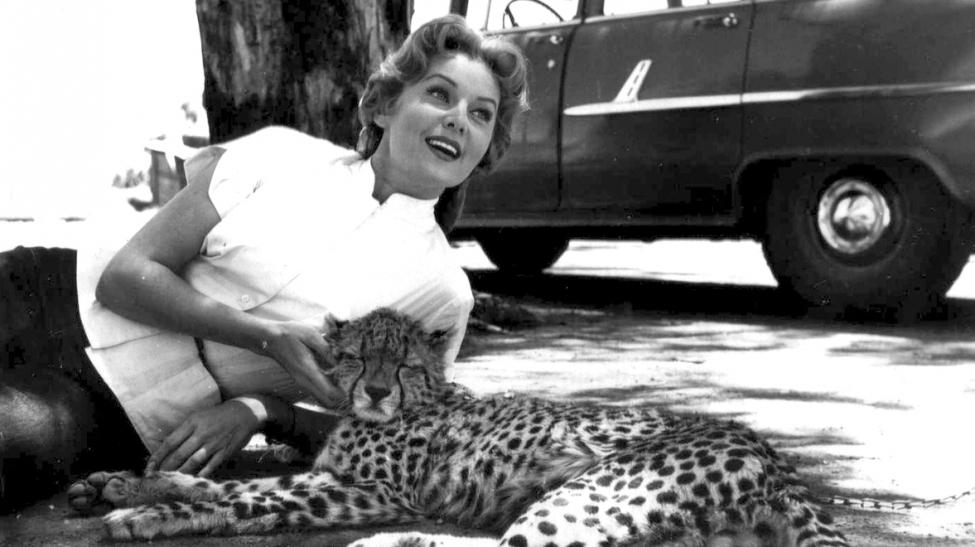 With leopard, Kenya